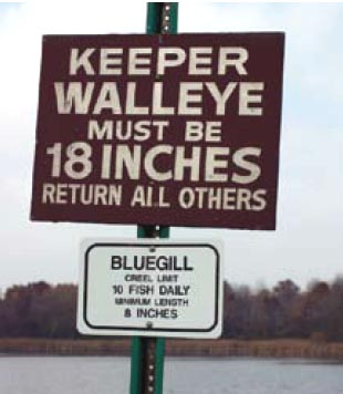fishing sign