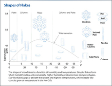 snow flake diagram