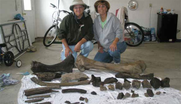 "Images from ""Family Discovers 10,000-Year-Old Mastodon Bones in Backyard"""