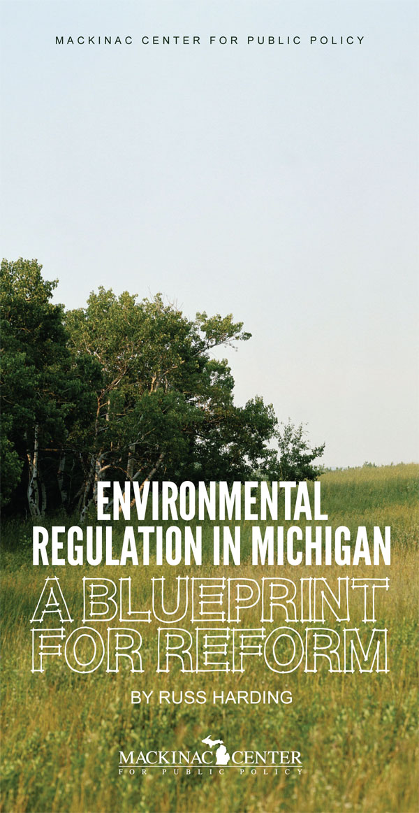 "Images from ""A Blueprint for Regulatory Overhaul"""