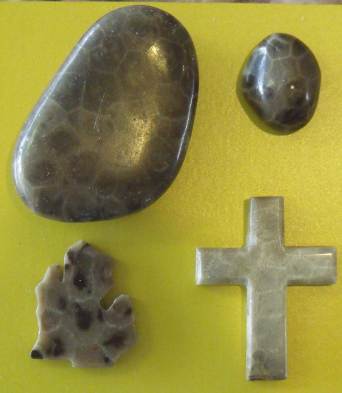 Various polished Petoskey Stones