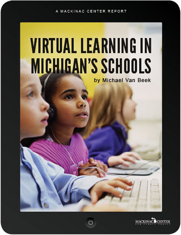 "Images from ""Virtual Learning in Michigan's Schools"""