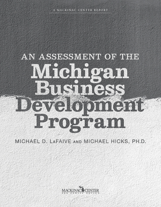 An Assessment of the Michigan Business Development Program
