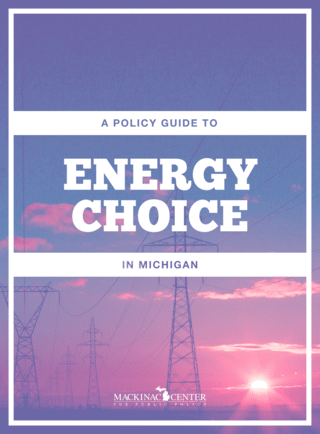 A Policy Guide to Energy Choice in Michigan