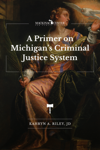 A Primer on Michigan's Criminal Justice System