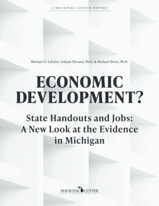 Economic Development? State Handouts and Jobs