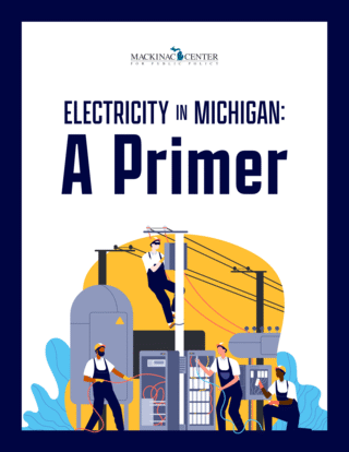 Electricity in Michigan: <nobr>A Primer</nobr>