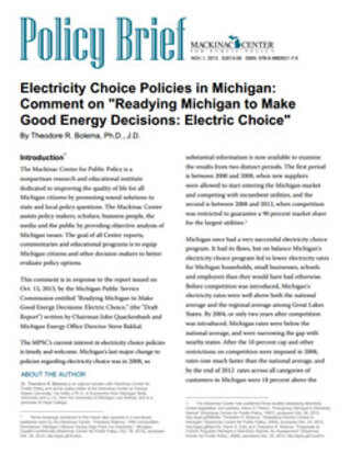 "Electricity Choice Policies in Michigan: Comment on ""Readying Michigan to Make Good Energy Decisions: Electric Choice"""