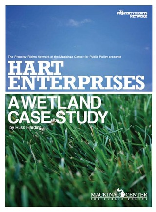 Hart Enterprises: A Wetland Case Study